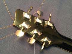 Guitar Stagg